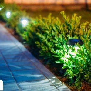 הקמת גינה כולל תאורה