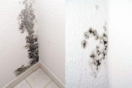 רטיבות בחדר אמבטיה