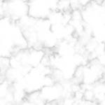 ריצוף שיש לבן עם עורקים