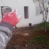 צבע חיצוני לבית פרטי בכפר סבא
